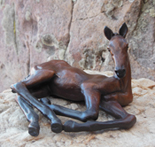 Resting Filly by Cathy Irving